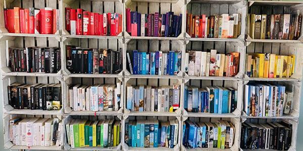 Met deze boeken en series kom je deze zomer moeiteloos door